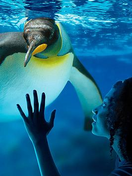 virgin-experience-days-visit-to-sea-life-london-aquarium-for-two-adults