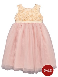 ladybird-girls-rose-bud-bodice-and-tutu-occasion-dress-12-months-7-years