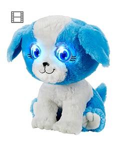bright-eyes-puppy