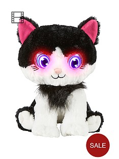 bright-eyes-kitty