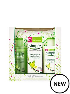 simple-gift-of-goodness-cosmetics-bag