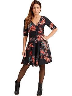 joe-browns-adeles-dress
