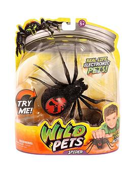 spider-single-pack--creepster