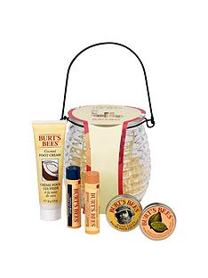 burts-bees-treat-from-the-bees-set