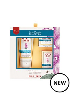 burts-bees-intense-hydration-set