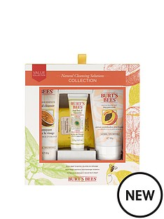 burts-bees-cleanser-set