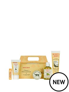 burts-bees-natures-indulgence-set