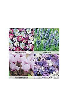 thompson-morgan-flower-carpet-collection-280-bulbs