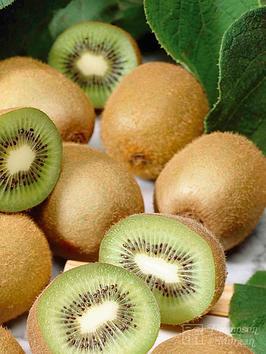 thompson-morgan-jenny-potted-kiwi-plantnbsp--1-x-2-litre-pot