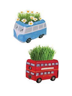 grass-growing-kits