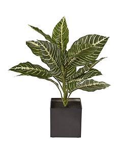 fauxnbspzebra-plant-in-metal-pot
