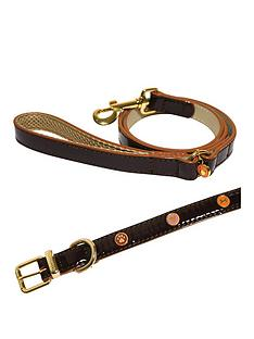 rosewood-wag-039n039-walk-oxblood-small-dog-collar-and-lead-set-small-8-10inch