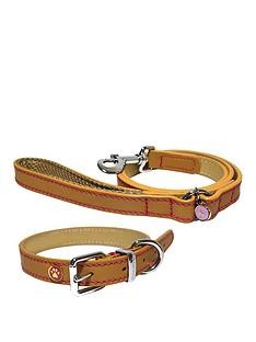 rosewood-luxury-tan-leather-small-dog-collar-amp-lead-set-x-small