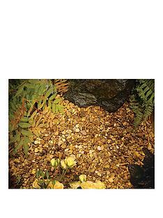 kelkay-autumn-gold-flint-750kg-bulk-bag