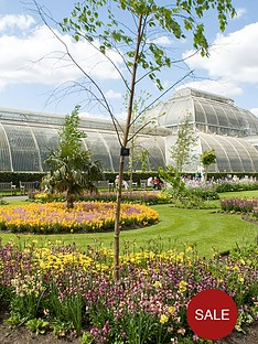 virgin-experience-days-visit-to-kew-gardens-and-palace-with-aft