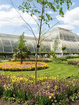 virgin-experience-days-visit-to-kew-gardens-and-palace-with-afternoon-tea-for-twonbsp
