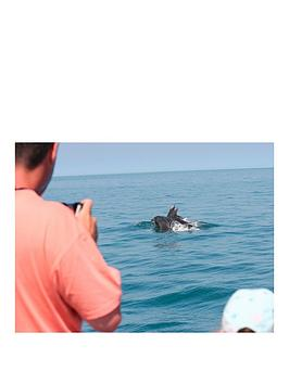 virgin-experience-days-dolphin-watching-for-two