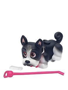 pet-parade-single-puppy-pack-french-bulldog