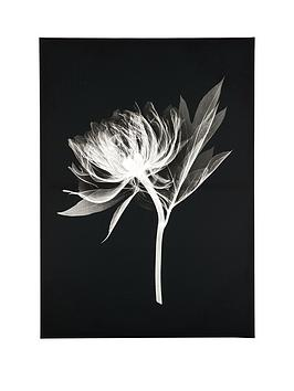 graham-brown-floral-silhouette-canvas