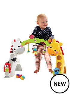 fisher-price-fisher-price-newborn-to-toddler-play-gym