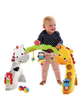 fisher-price-newborn-to-toddler-play-gym
