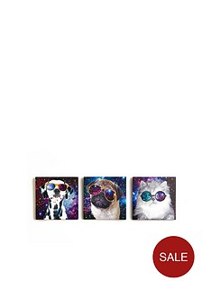 arthouse-set-of-3-space-animals-canvases