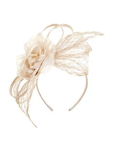 coast-coast-kerry-grid-fascinator
