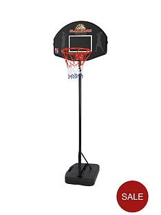 toyrific-junior-basketball-set