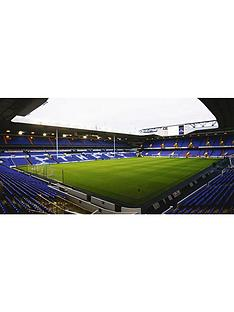virgin-experience-days-tottenham-fc-stadium-tour-for-2