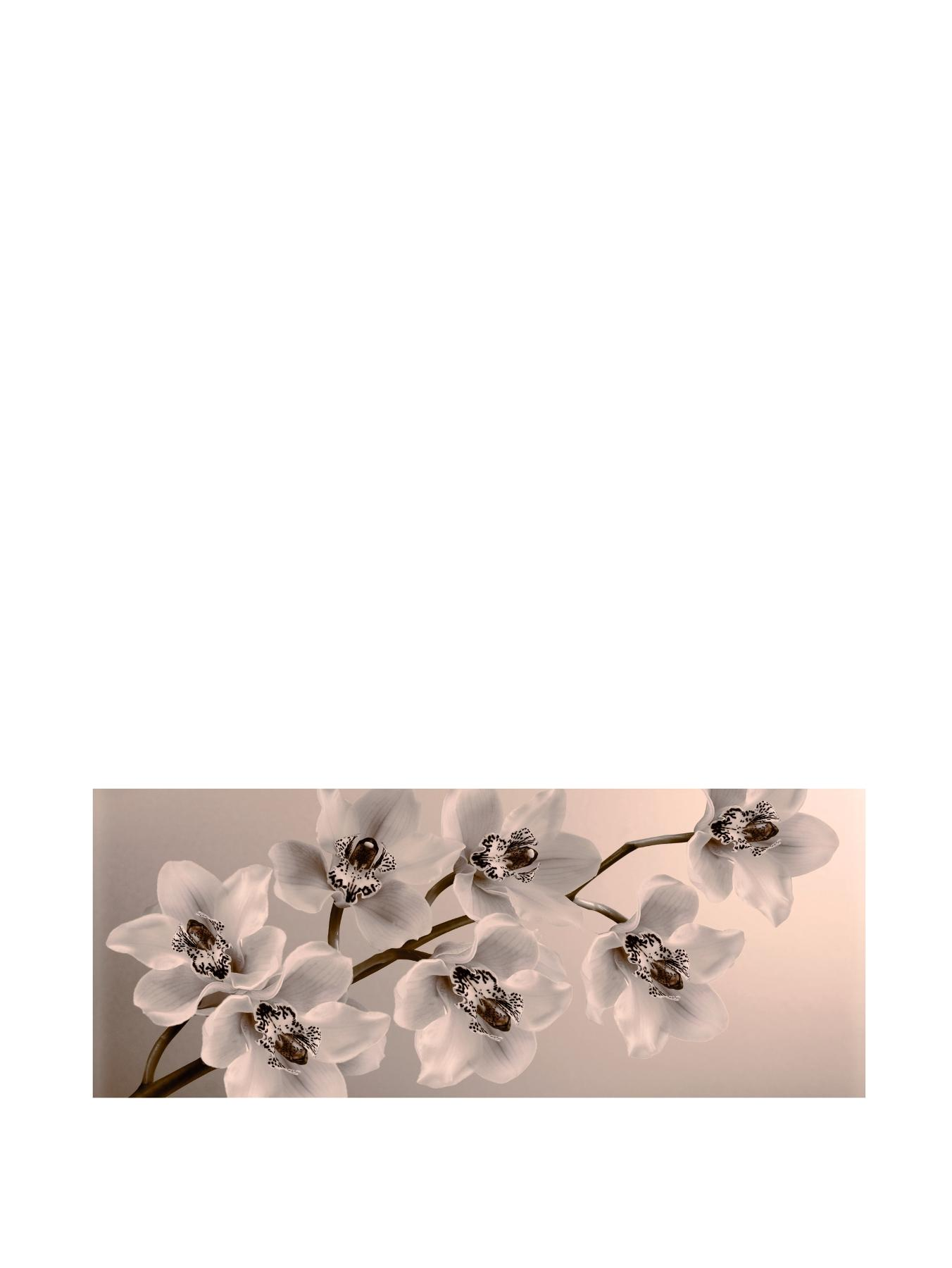 Orchid Branch Canvas