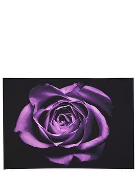 graham-brown-drama-rose-canvas