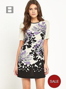 oasis-pastel-shadow-border-shift-dress