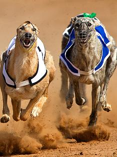virgin-experience-days-greyhound-racing-trackside-package-for-four-adults