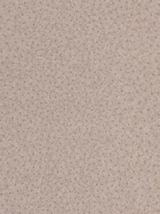 graham-brown-ostrich-look-wallpaper-taupe