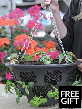 thompson-morgan-easy-fill-hanging-basket-x-2