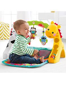 fisher-price-newborn-to-toddler-play-gym