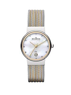 skagen-klassik-two-tone-striped-mesh-ladies-watch