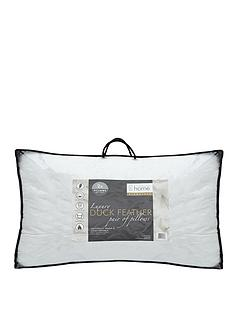 catherine-lansfield-signature-duck-feather-pillow-2-pack