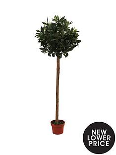 artificial-bay-tree