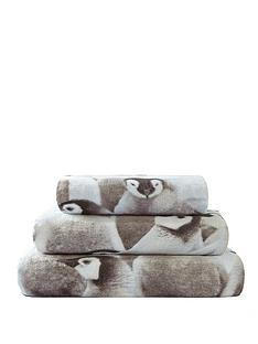 penguin-towel-range