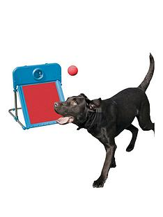 rosewood-agility-range-for-dogs-flyball