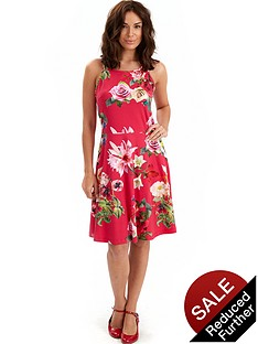 joe-browns-dragonfly-dress
