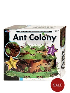 ant-colony