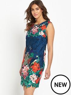 joe-browns-joe-browns-perfect-peacock-lace-dress