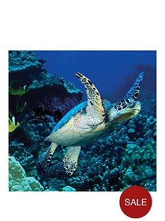 virgin-experience-days-visit-to-sealife-scarborough-for-two