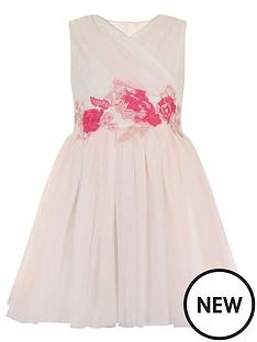 little-misdress-embroidered-mesh-dress