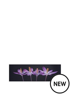 graham-brown-crocus-embrace-lacquer-art-picture