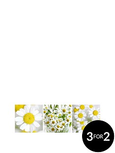 arthouse-set-of-3-daisy-floral-canvases