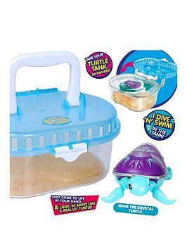 little-live-pets-turtle-tank