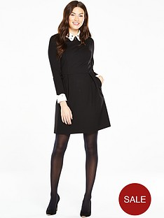 ted-baker-embroidered-collar-dress